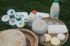 Selection de produits laitiers
