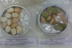Escargots préparés en croquilles fourme de Montbrison et Persillade